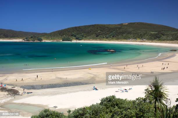 matai beach, northland, new zealand - northland new zealand stock pictures, royalty-free photos & images
