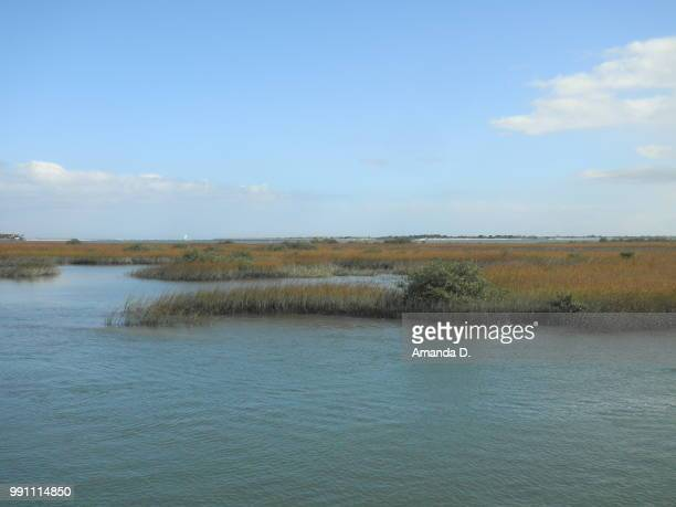 matanzas river - amanda marsh stock pictures, royalty-free photos & images