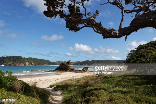matapouri bay in northland - northland new zealand stock pictures, royalty-free photos & images