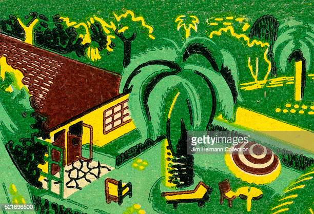 Matchbook image of a backyard with a large palm tree umbrella and chairs grass and lots of foliage as an advertisement for Universal Nursery