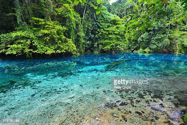 matevulu blue hole, espiritu santo island, vanuatu - lighthouse reef stock pictures, royalty-free photos & images