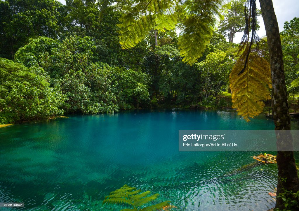 Matevulu blue hole, Sanma Province, Espiritu Santo, Vanuatu... : News Photo