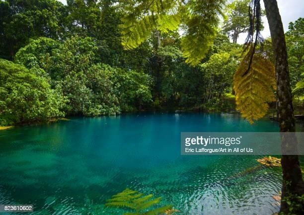 Matevulu blue hole, Sanma Province, Espiritu Santo, Vanuatu on September 2, 2007 in Espiritu Santo, Vanuatu.