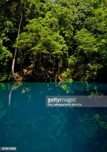 Matevulu blue hole, Sanma Province, Espiritu Santo, Vanuatu on September 3, 2007 in Espiritu Santo, Vanuatu.