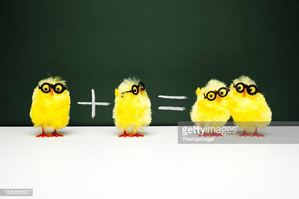 Math Lesson - Nerd  Chick Chicken Humor Fun Mathematics Easter