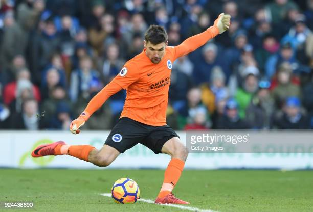 Mathew Ryan of Brighton and Hove Albion passes the ball during the Premier League match between Brighton and Hove Albion and Swansea City at Amex...