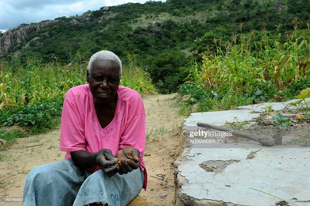 Matilda Mahlatini, 76, poses on March 15, 2013 in her village of Chinamhora, Zimbabwe. Mahlatini will not be joining hundreds of thousands of Zimbabweans voting in a referendum on March 16 on whether to adopt a new charter to pave way for new elections and a possible end to a shaky power-sharing government. The widow who ekes a living on a small plot in Cheza village in Chinamhora, 60 kilometres north-east of Zimbabwe, says she only heard about the draft charter, has no knowledge about its contents and that her welfare takes priority over the vote. 'I will be chasing away the monkeys and baboons,' the grey-haired Mahlatini told AFP referring to the marauding animals that besiege fields in the village in search of fresh corn. 'If I go to vote all of my mealies will be eaten and what am I going to eat myself ?' Her only hope is that the vote will change things 'especially the economy.'