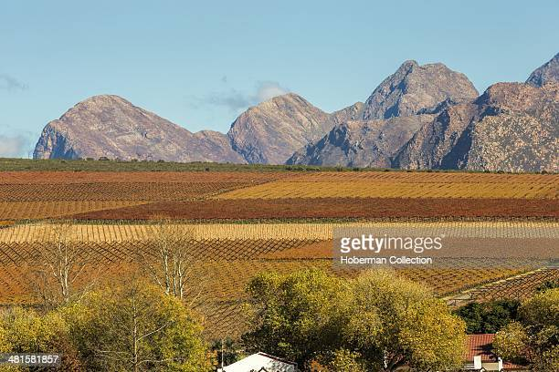Matroosberg Mountains With Vineyards In The Hex River Valley