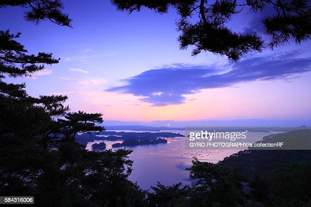 Matsushima at dusk