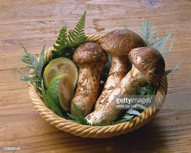 Matsutake mushrooms with Citrus fruit in Basket