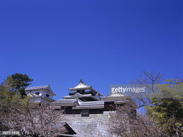 matsuyama castle and cherry blossoms, matsuyama city, ehime prefecture, japan - matsuyama ehime stock pictures, royalty-free photos & images