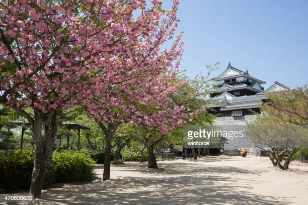 matsuyama castle in ehime prefecture, shikoku, japan - matsuyama ehime stock pictures, royalty-free photos & images