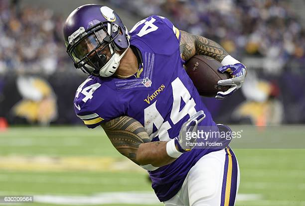 Matt Asiata of the Minnesota Vikings carries the ball in the third quarter of the game against the Indianapolis Colts on December 18 2016 at US Bank...