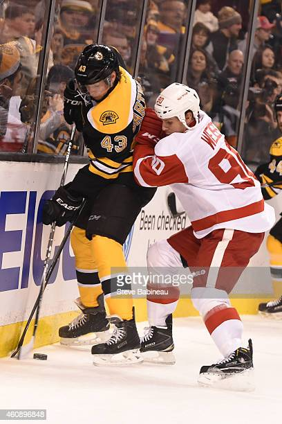 Matt Bartkowski of the Boston Bruins fights for the puck against Stephen Weiss of the Detroit Red Wings at the TD Garden on December 29, 2014 in...