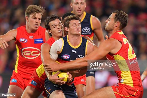 Matt Crouch of the Crows competes for the ball during the round six AFL match between the Adelaide Crows and Gold Coast Suns at Adelaide Oval on...