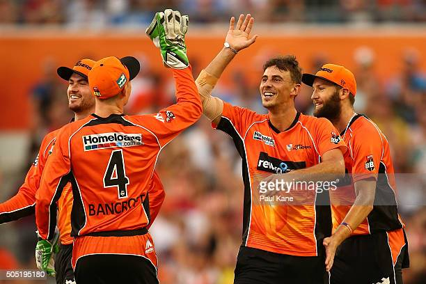 Matt Dixon of the Scorchers celebrates the dismissal of Peter Handscomb of the Stars during the Big Bash League match between the Perth Scorchers and...