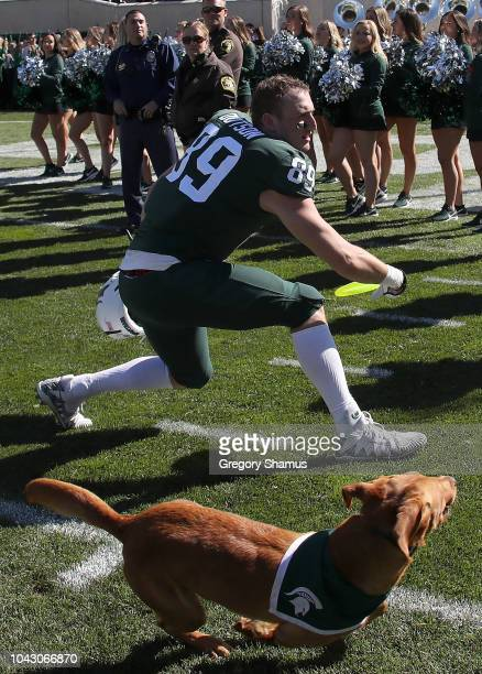 Matt Dotson of the Michigan State Spartans throws a frisbee for Zeke the wonder dog after a 3120 win over the Central Michigan Chippewas at Spartan...