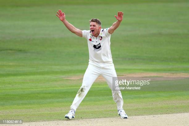 Matt Milnes of Kent appeals unsucsessfully during day one of the Specsavers County Championship Division One match between Kent and Surrey on May 20...