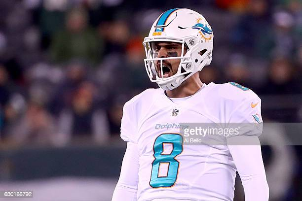 Matt Moore of the Miami Dolphins celebrates after throwing a 52 yard touchdown pass to Kenny Stills against the New York Jets during the second...