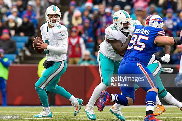 Matt Moore of the Miami Dolphins drops back to pass against the Buffalo Bills during the first quarter at New Era Field on December 24 2016 in...