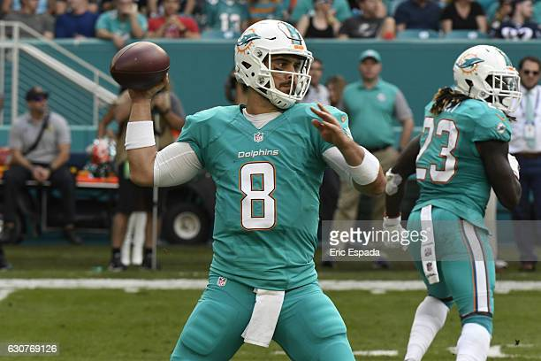 Matt Moore of the Miami Dolphins drops back to pass during the 3rd quarter against the New England Patriots at Hard Rock Stadium on January 1 2017 in...