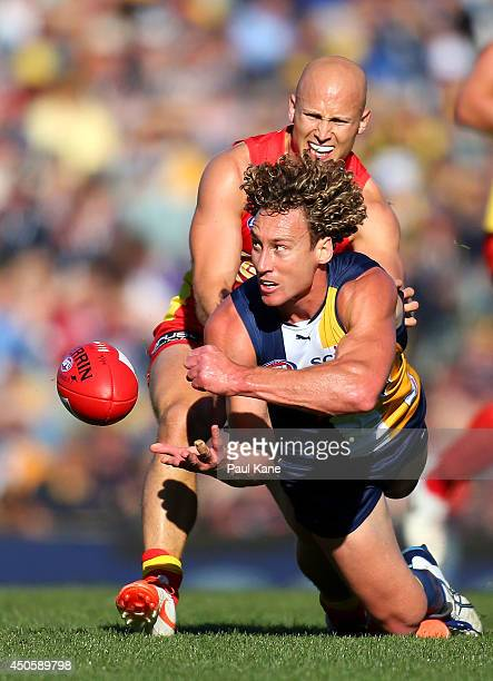Matt Priddis of the Eagles hand balls against Gary Ablett of the Suns during the round 13 AFL match between the West Coast Eagles and the Gold Coast...