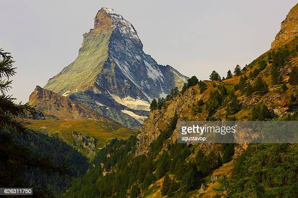 Matterhorn above zermatt pine trees woodland idyllic valley, Swiss Alps