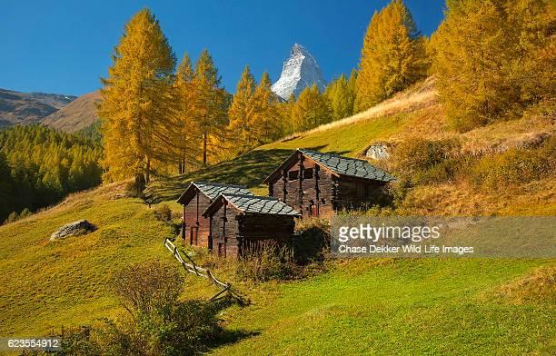 matterhorn autumn - european larch stock pictures, royalty-free photos & images