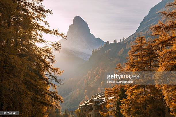 matterhorn peak framed by autumn leaves seen from zermatt village - pyramid shapes around the house stock pictures, royalty-free photos & images
