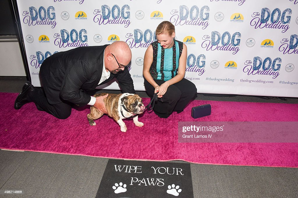 'The Dog Wedding' Premiere : News Photo