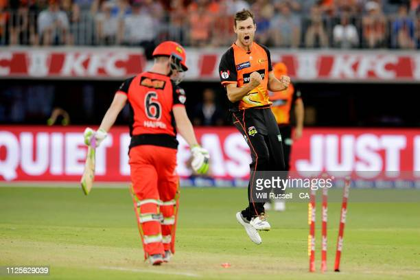 Matthew Kelly of the Scorchers celebrates after taking the wicket of Sam Harper of the Renegades during the Big Bash League match between the Perth...