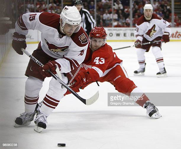 Matthew Lombardi of the Phoenix Coyotes tries to control the puck in front of Darren Helm of the Detroit Red Wings during Game Four of the Western...