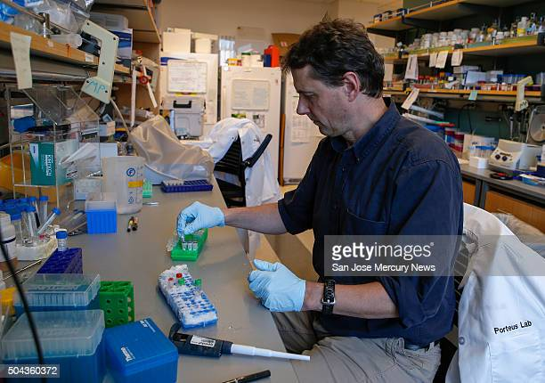 Matthew Porteus professor of pediatrics at Stanford School of Medicine pipettes DNA to use for gene editing of stem cells at Lokey Stem Cell lab at...