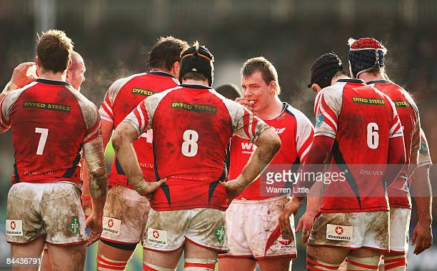 Matthew Rees of Scarlets looks on with team mates during the Heineken Cup Pool Four match between Harlequins and Scarlets at the Stoop on January 24,...