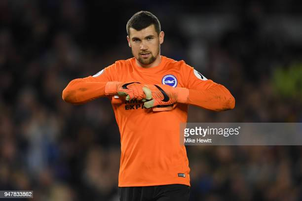 Matthew Ryan of Brighton Hove Albion looks on during the Premier League match between Brighton and Hove Albion and Tottenham Hotspur at Amex Stadium...
