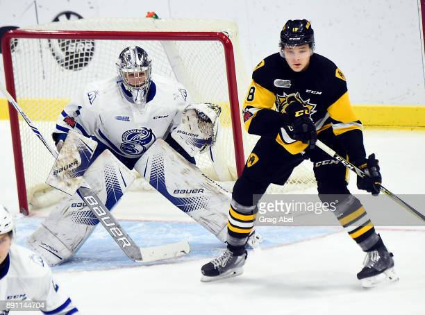Matthew Strome of the Hamilton Bulldogs and goalie Jacob Ingham of the Mississauga Steelheads prepare for a shot during game action on December 10...