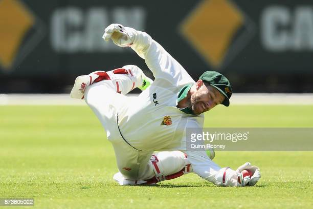 Matthew Wade of Tasmania takes a catch to dismiss Seb Gotch of Victoria during day two of the Sheffield Shield match between Victoria and Tasmania at...