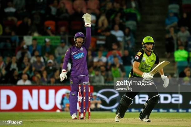 Matthew Wade of the Hurricanes appeals as Chris Green takes off for a run during the Big Bash League match between the Sydney Thunder and the Hobart...