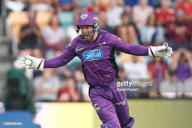 Matthew Wade of the Hurricanes celebrates after catching out Joe Denly of the Sixers during the Big Bash League match between the Hobart Hurricanes...