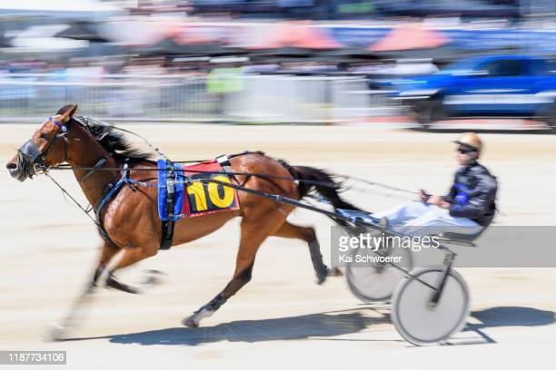 Matthew Williamson driving Wandering Star warms up prior to Race 1 Metropol Mobile Trot during the Show Day Races at Addington Raceway on November 15...