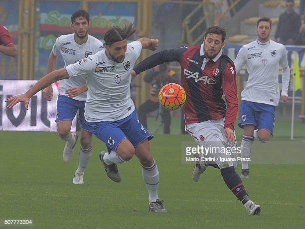 Mattia Destro of Bologna FC in action during the Serie A match between Bologna FC and UC Sampdoria at Stadio Renato Dall'Ara on January 31 2016 in...