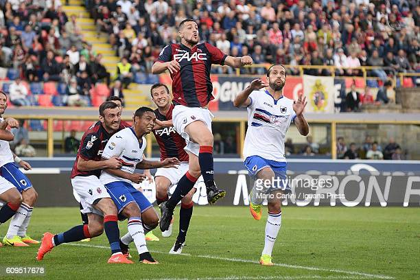 Mattia Destro of Bologna FC in action during the Serie A match between Bologna FC and UC Sampdoria at Stadio Renato Dall'Ara on September 21 2016 in...