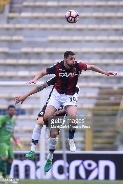 Mattia Destro of Bologna FC in action during the Serie A match between Bologna FC and Udinese Calcio at Stadio Renato Dall'Ara on April 30 2017 in...