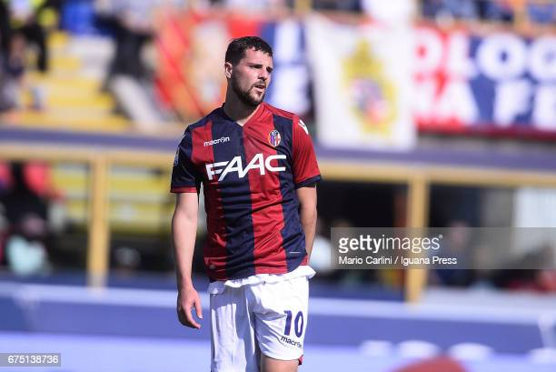 Mattia Destro of Bologna FC looks on during the Serie A match between Bologna FC and Udinese Calcio at Stadio Renato Dall'Ara on April 30 2017 in...