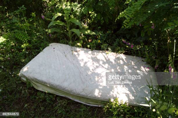 mattress between in the undergrowth used for prostitution - stockings no shoes stock photos and pictures