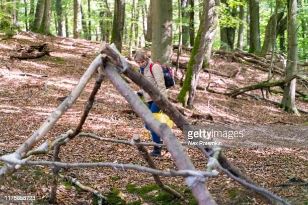 mujer madura de 55 años en busca de setas en el bosque en otoño. - 50-59 years and women only fotografías e imágenes de stock