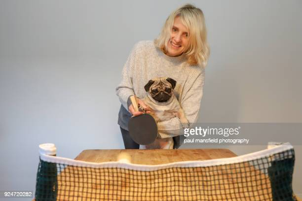 mature adult lady and dog playing table tennis - funny ping pong stock pictures, royalty-free photos & images