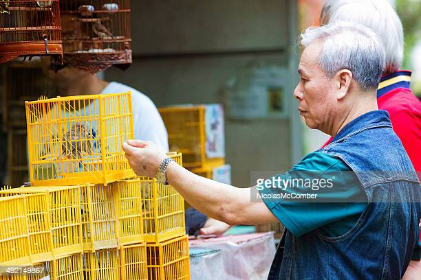 Mature Asian man shopping for birds