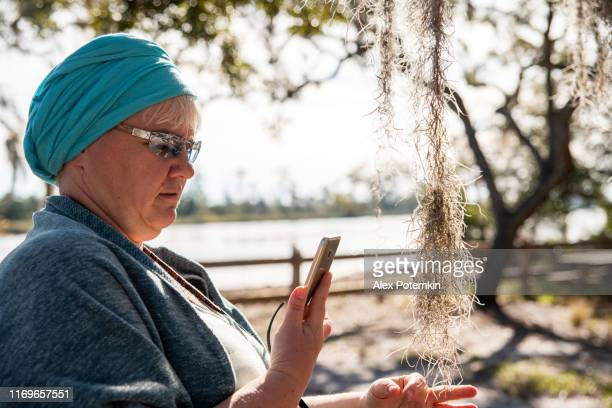 mature attractive caucasian-white woman taking pictures with a smartphone of the epiphyte plant tillandsia usneoides in the ochlockonee river state park, north florida. - florida us state stock pictures, royalty-free photos & images