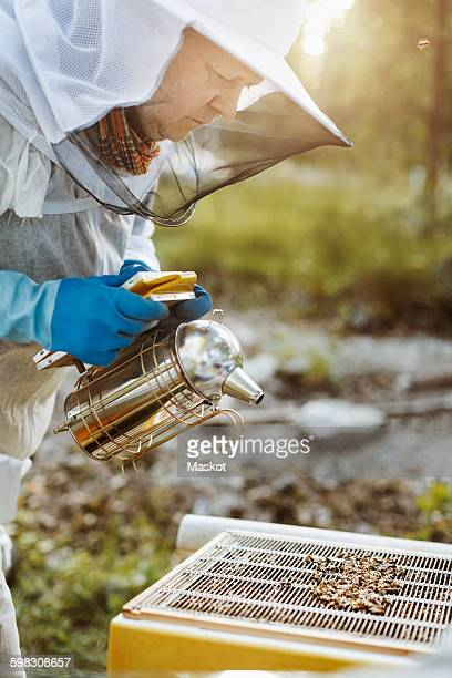 Mature beekeeper holding smoker while examining beehive on field